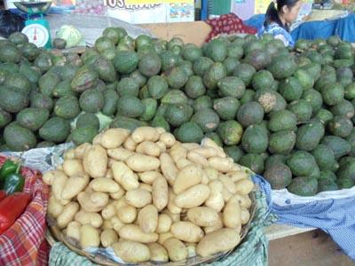 Antigua Guatemala Produce