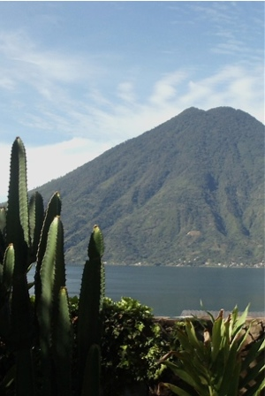 Volcano-cactus 1aws